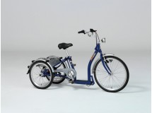 tricycle electrique mobile