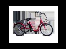 Tricycle Aneto Electrique 25 kg Aluminium Moteur pédalier Roue LIbre, Nexus 3-50 km - Bonne Affaire
